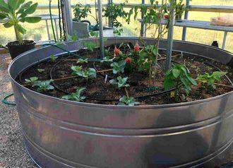 Bon Planters, Garden Rings, And Rain Tanks: Stainless Lasts Forever   Metal  Rain Tanks